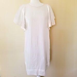 J CREW - White Cotton, Size 4, Sheath Dress